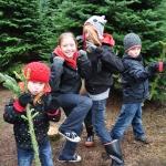tree hunt 2011 076